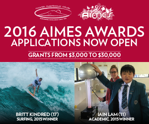 2016 AIMES Awards Applications Open! name